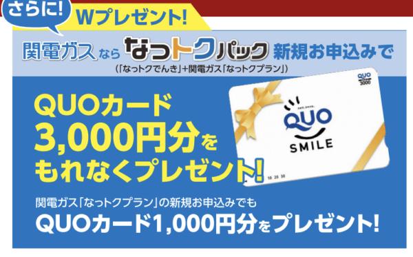 関電ガスキャンペーン