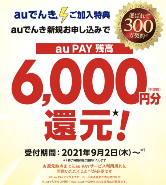 auでんきキャンペーン6千円ポイント還元
